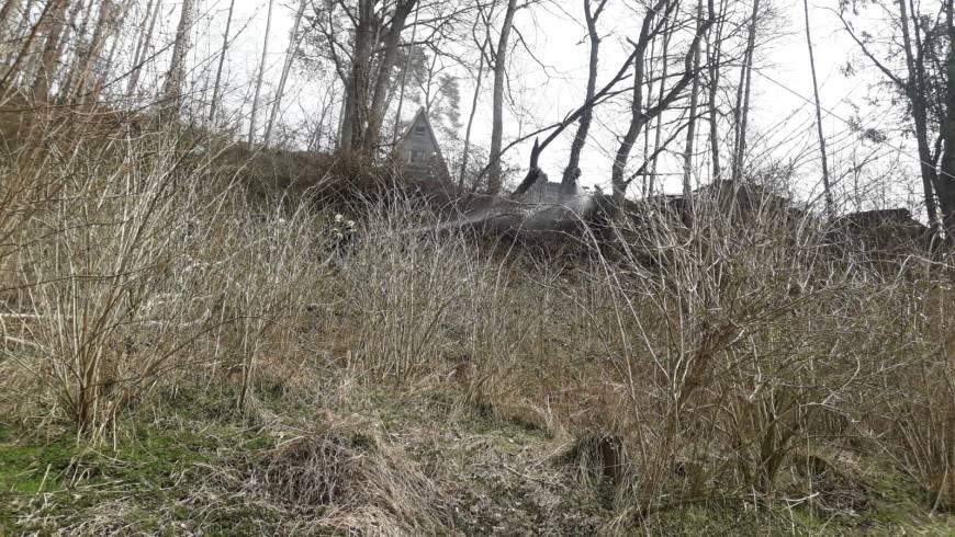 Brand Baum, Flur, Böschung (25.03.2020)